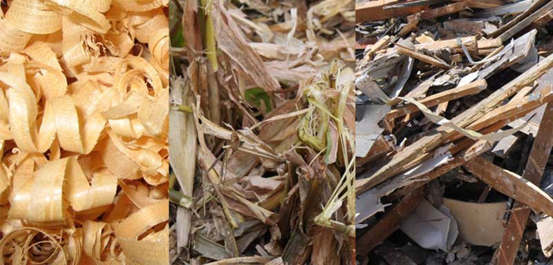 raw materials for biomass pellet plant