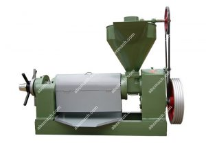 large plate oil filter machine