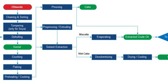 chart flow of oil pressing process
