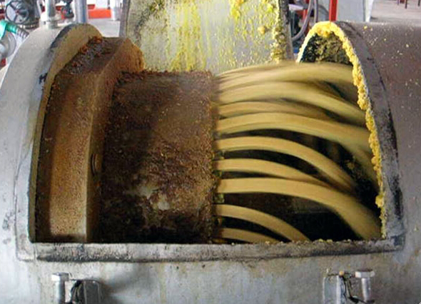 oilseed-expanding-process