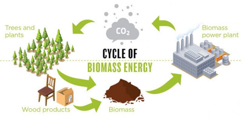 recycling of biomass energy