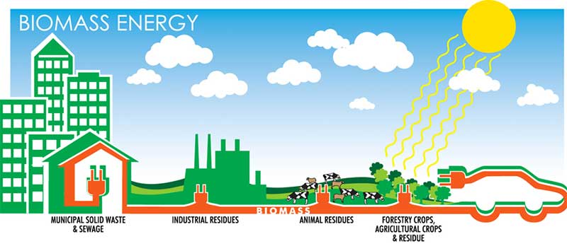 utilization of biomass energy