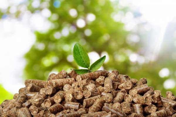 wood pellet is a typical biomass energy